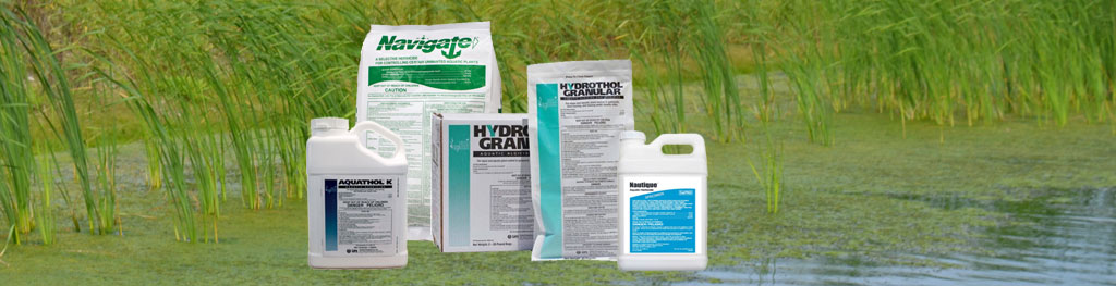 Herbicides for a healthy pond