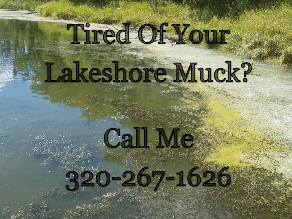 lakeshore muck removal