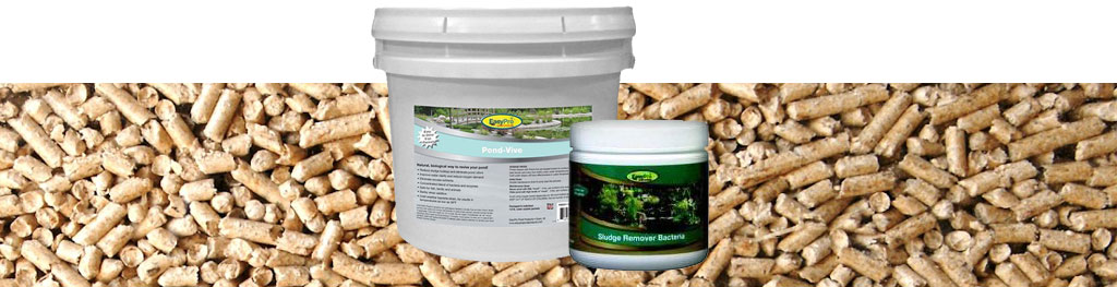 Muck Reducers for your fishing pond
